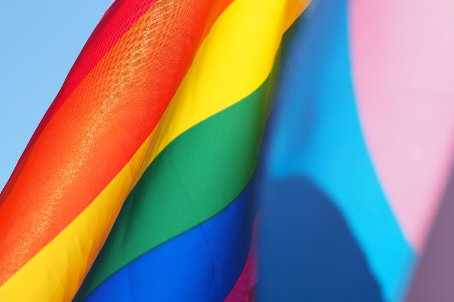rainbow flag lgbtqi