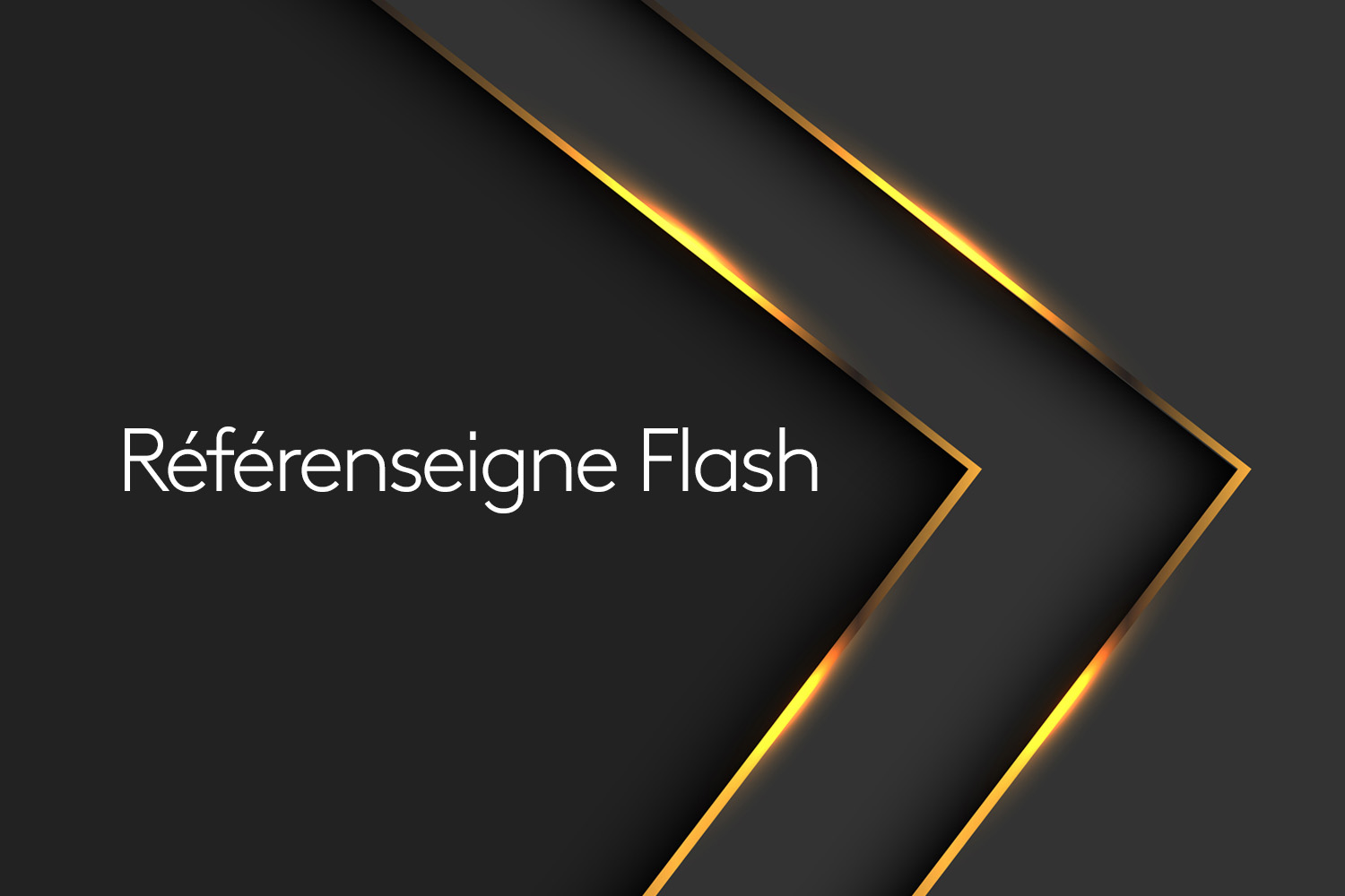 referenseigne flash